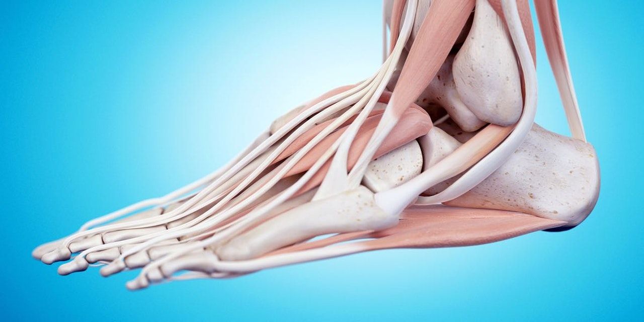 Image result for How Can Physiotherapy Help with Neuropathy?